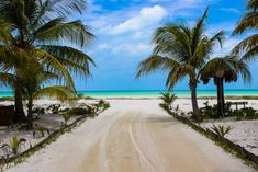Our Favourite 9 Places To Visit In Mexico Mexico Resorts, Mexico Vacation, Cruise Vacation, Mexico Travel, Disney Cruise, Road Trip Essentials, Road Trip Hacks, Road Trips, Cool Places To Visit