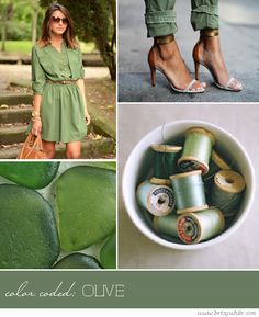 Color Coded: Olive
