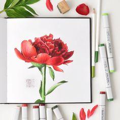 Картинки по запросу скетч цветы с помощью маркеров