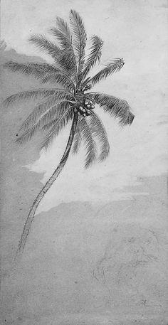 Palm Tree  Elihu Vedder