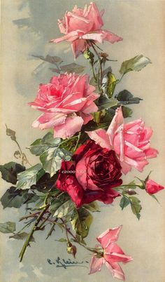 *FREE SHIPPING* This sweet print pairs soft pastel pink roses with a darker American Beauty rose. This print is a study by the Victorian