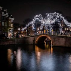 The considerably planned city of Amsterdam is among the couple of cities in the world where individuals, the streets and the environment are a destination in themselves. Amsterdam Winter, Amsterdam City, Winter Light Festival, Festival Lights, Downtown Portland, Festivals Around The World, Canal Boat, Months In A Year, Photo Booth