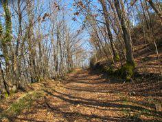trekking in Monticiano