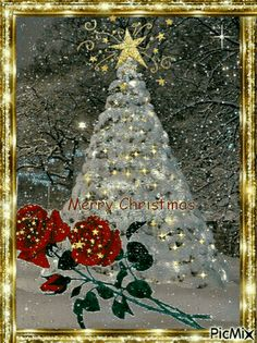 arbol navideños foundrados en la web - Merry Christmas To All - Weihnachten Christmas Tree Gif, Christmas Scenery, Merry Christmas Happy Holidays, Christmas Blessings, Christmas Love, Christmas Pictures, Christmas Greetings, Winter Christmas, Vintage Christmas