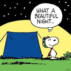 207 best images about Snoopy~~