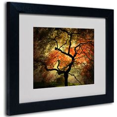 Trademark Art 'Japanese' Framed Matted Art by Philippe Sainte-Laudy