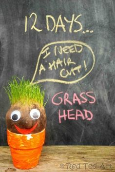 "Grass Heads - easy and fun to make - make them all year round and bring some ""green"" indoors. So fun!"