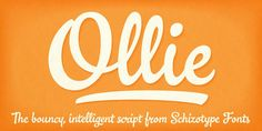 Super cute casual script by Schizotype has a huge variety of special features.