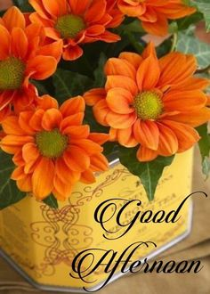 Good Afternoon Images ,Pic, Messeges, Quotes and Wishes Good Morning Rose Images, Good Morning God Quotes, Good Afternoon Quotes, Morning Morning, Good Morning Flowers, Morning Greetings Quotes, Good Morning Good Night, Morning Pictures, Good Afternoon Images Hd