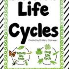 Frog And Butterfly Life Cycles- Compare & Contrast, Text Evidence, Sequence