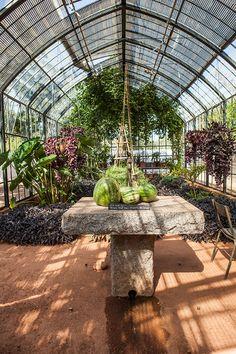 a shoot at babylonstoren for delicious magazine with martin boetz Veg Garden, Edible Garden, Delicious Magazine, Glass Roof, Conservatory, Water Features, Garden Inspiration, Backyard, South Africa