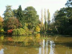 The lake at Windlesham Arboretum