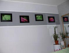 Fotogalerie für die Wand Wandgestaltung,Malerarbeiten,Fotos