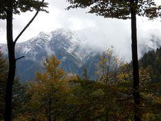 Un bellissimo paesaggio dalla zona della Foresta di Forchiutta.