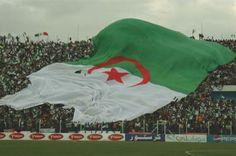 Ces supporters algériens qui chantent pour Kadhafi