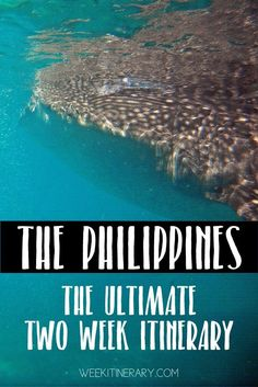 The Philippines The ultimate two week itinerary