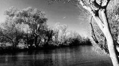 Una delle poesie dell'Antologia di Spoon River di Edgar Lee Masters