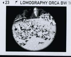 #Lomography