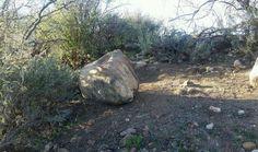 Feds Investigate Petroglyph Vandalism at Catalina State Park Near Tucson