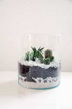 DIY Kaktus Terrarium | www.emmaluise.com