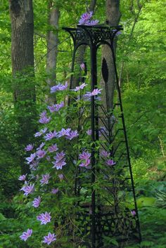 Love this tower with the clematis. Can envision how beautiful it will be when the clematis encircle it. Love me some Clematis! Diy Garden, Garden Cottage, Dream Garden, Garden Art, Garden Landscaping, Balcony Gardening, Fairy Gardening, Garden Projects, Unique Gardens
