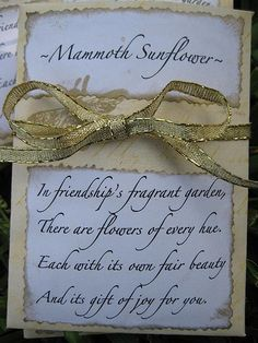 Homemade Seed Packet Gifts