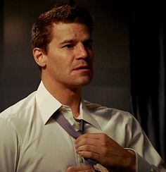 """David Boreanaz - from """"End in the Beginning"""""""