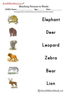 sight word games Wild Animals