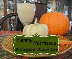 Healthy Pumpkin Smoothie timbercreekfarmer.com