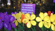 Photography taken by award-winning Chicago Tribune photo journalists Alzheimer's Walk, Walk To End Alzheimer's, Alzheimer's Association, Alzheimers, Christmas Ornaments, Holiday Decor, Garden, Photography, Photograph