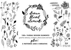 Hand Sketched Floral Elements by Erika Firm on @creativemarket