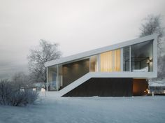 Slanted House is a home visualized by Michal Nowak. The project will be carried out by 81.WAW.PL.              Renderings courtesy of Michal Nowak