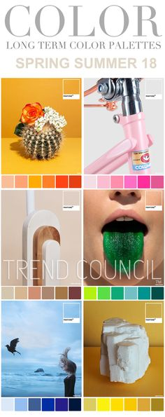 Trend council ss18 colour
