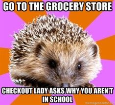 "And in Singapore the checkout ladies don't understand the term 'homeschooled' so I have to say ""my mom teaches me at home""."