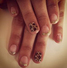 Leopard with gold