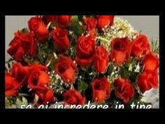Anul Nou, Christmas Wreaths, Happy Birthday, Motto, Holiday Decor, Youtube, Happy Brithday, Urari La Multi Ani, Happy Birthday Funny