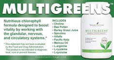 Nutritious chlorophyll formula designed to boost vitality by working with the glandular, nervous, and circulatory systems. Young Living Oils, Young Living Essential Oils, Young Living Supplements, Melissa Oil, Barley Grass, Bee Pollen, Circulatory System, Spirulina, Autoimmune