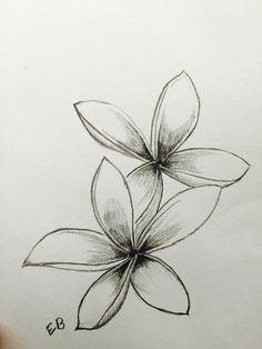 Plumeria Flower Drawing at Paintingvalley in hawaiian flower drawing Frangipani Hawaiian Flower Drawing, Hibiscus Flower Drawing, Simple Flower Drawing, Beautiful Flower Drawings, Flower Tattoo Drawings, Outline Drawings, Hawaiian Flowers, Flower Tattoo Designs, Flower Art