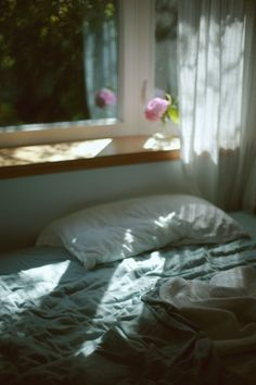 morning | bed | flower | sunshine | curtain