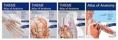 THIEME ATLAS ANATOMY COLLECTION ~ MEDICAL BOOKS FOR YOU Atlas Anatomy, Medical, Books, Collection, Libros, Medicine, Book, Book Illustrations, Med School