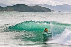 someday i will learn to surf