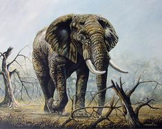 Walk About~Anthony Mwangi  magnificent elephant painting