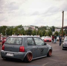 Mean Lupo