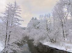 Yankee Magazine's Featured Photographer January 2011: Winter in Vermont - Yankee Magazine