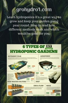 So if you are reading this its a good chance you want info on hydroponic growing , so I will get to it. I started with a single DW (deep water) bucket and I was so impressed I started researching hydro and the various methods Hydroponic Grow Systems, Hydroponic Growing, Hydroponics System, Hydroponic Gardening, Container Gardening, Gardening Tips, Garden Planning, Vegetable Garden, Indoor Plants