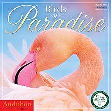 Audubon Birds of Paradise 2015 Wall Calendar