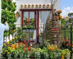 jardin vertical et un éventail de tournesols, pétunias et capucines en pots