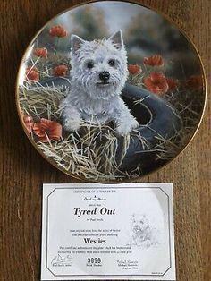 "Gold Trimmed West Highland White Terrier Collector Plate ""Tyred Out"" West Highland White, White Terrier, Westies, Terriers, The Collector, Authenticity, Dog Cat, Plates, Animal"