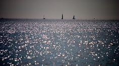 All Is Well, Airplane View, Sailing, Shots, Wellness, Beach, Candle, The Beach, Beaches