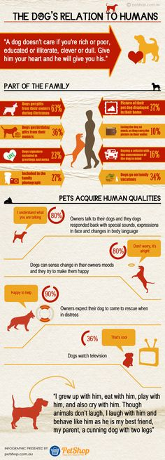 Dogs Relation to Humans This infographic about Dogs Relation to Humans is presented by http://www.petshop.com.au PetShop.com.au is a premium pet supplies company based in Syd